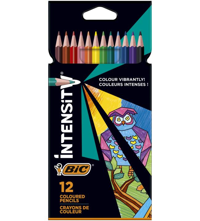 BIC Intensity 12 kpl värikynä