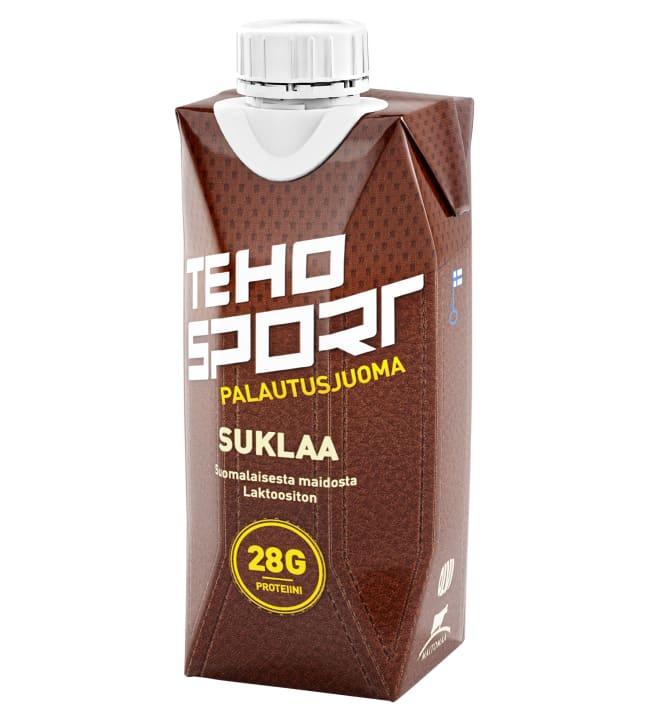 TEHO Sport Suklaa 0,33 l palautusjuoma