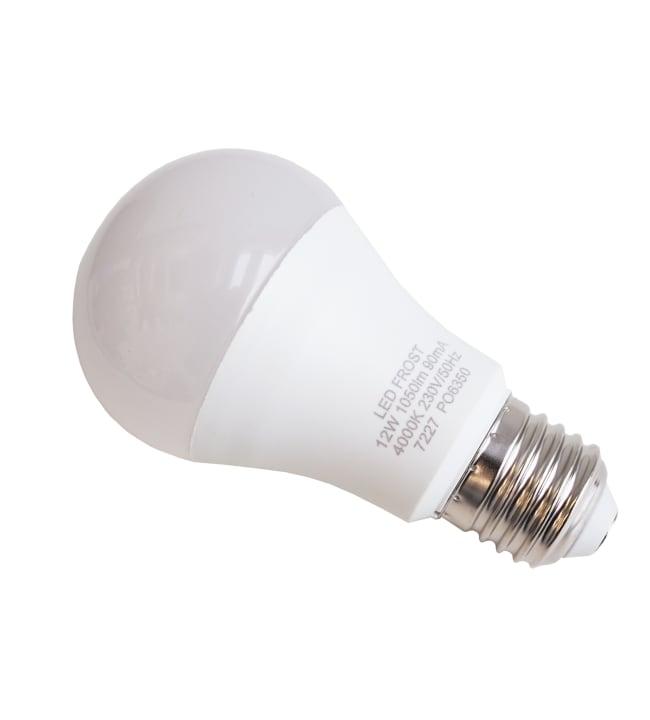 Led Energie 1050lm 12W 2kpl pakkaslamppu