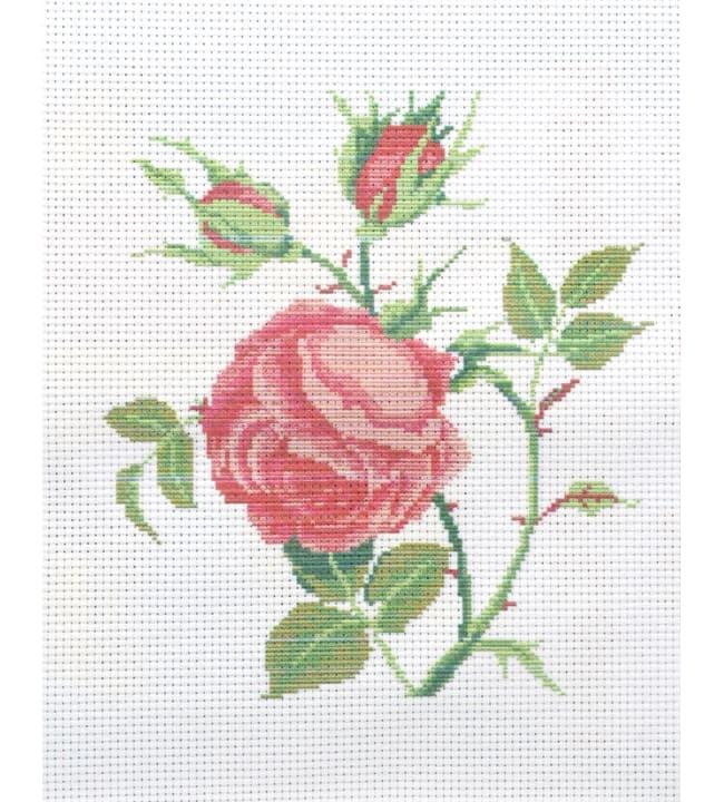 Ruusu kanavatyö