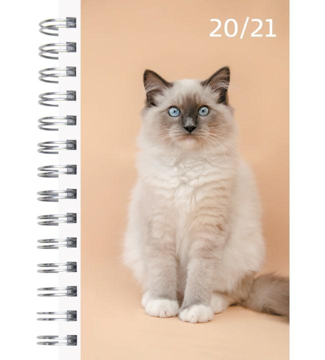 Burde Compact Pets 2020-2021 lukuvuosikalenteri