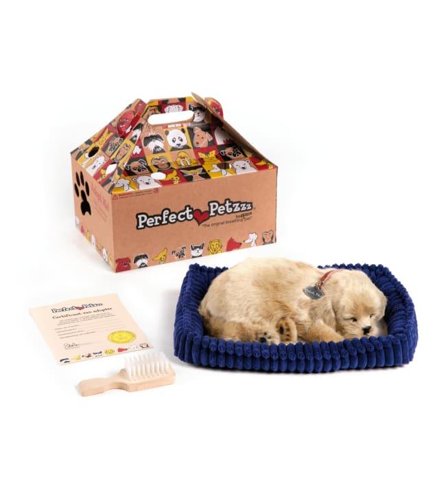 Perfect Petzzz Kultainen noutaja koira leikkilemmikki