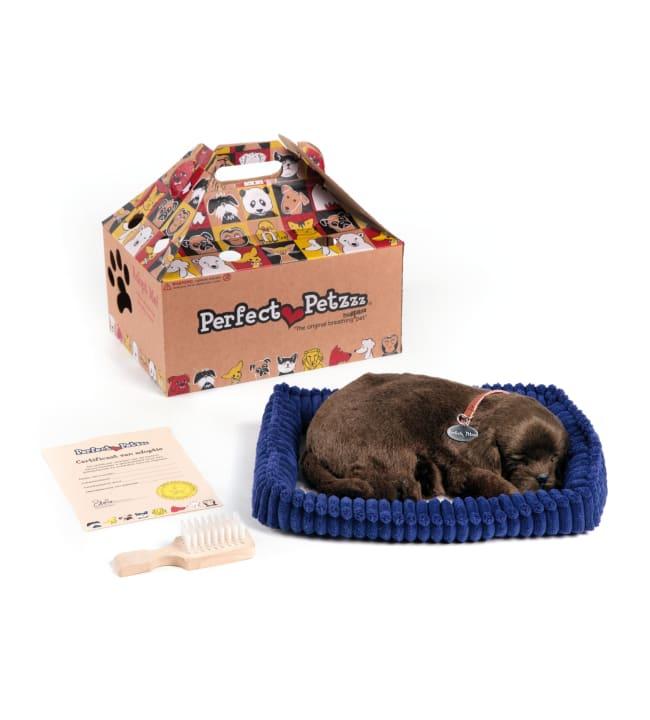 Perfect Petzzz Labradorinnoutaja koira leikkilemmikki