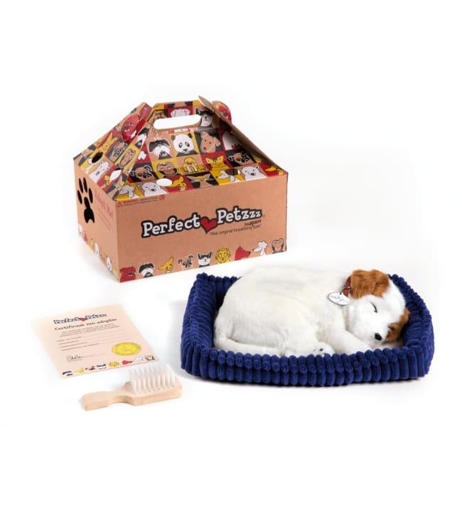 Perfect Petzzz Jackrusselinterrieri koira leikkilemmikki