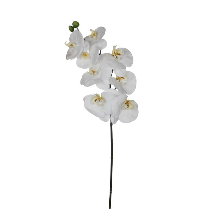 Silkkikukka 77cm orkidean oksa