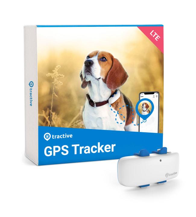 Tractive koiran GPS-paikannin LTE