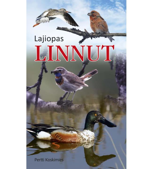 Pertti Koskimies: Linnut lajiopas