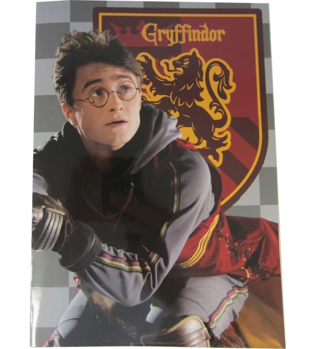 Harry Potter Gryffindor värityskirja