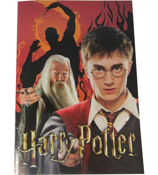 Harry Potter Harry & Dumbledore värityskirja